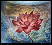 Jewel in the Lotus by Kuba Ambrose